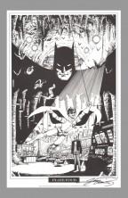 george-perez-signed-autograph-signature-art-print-batman-portfolio-robin-nightwing-4