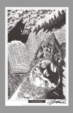 george-perez-signed-autograph-signature-art-print-batman-portfolio-robin-nightwing-6