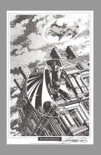 george-perez-signed-autograph-signature-art-print-batman-portfolio-robin-nightwing-7