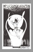 george-perez-signed-autograph-signature-art-print-batman-portfolio-robin-nightwing-9