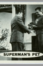 1966-adventures-of-superman-topps-trading-card-george-reeves-gum-pet-1