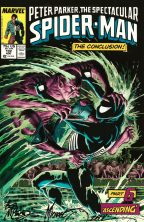 mike-michael-zeck-bob-mcleod-spiderman-spider-man-art-print-kraven-kravens-last-hunt-3