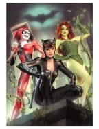 both-gotham-city-sirens-catwoman-poison-ivy-harley-quinn-art-print-1